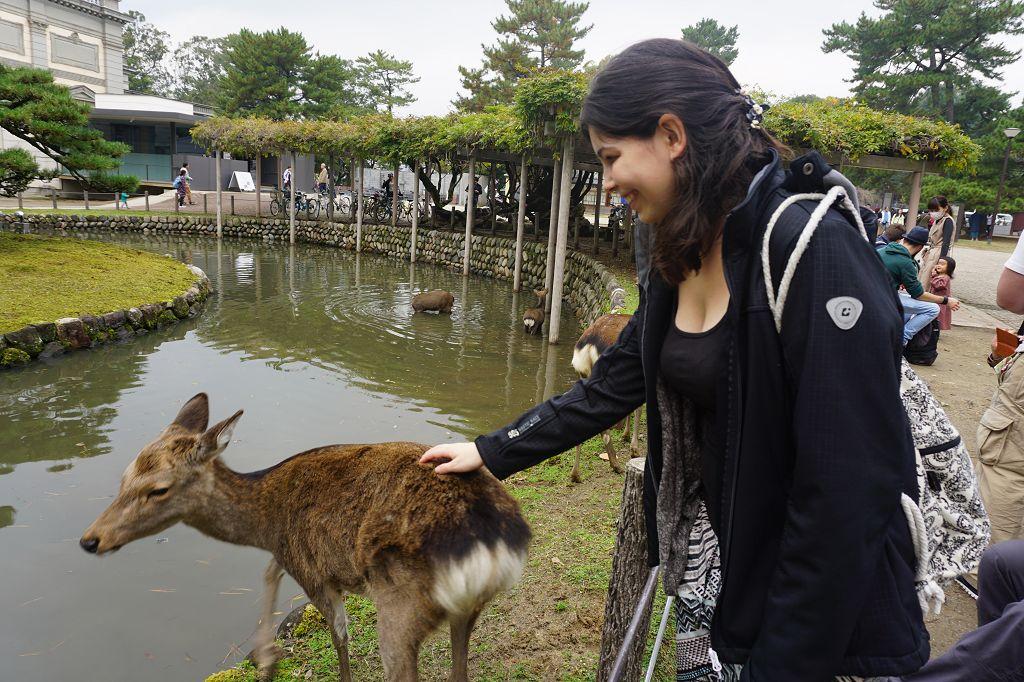 Frau_Hirsch_Bäume_Nara